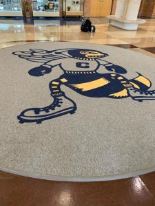 Center Schools Hornet Installed - Interface