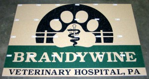 Brnadywine Veterinary Hospital