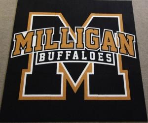 Milligan Buffalos